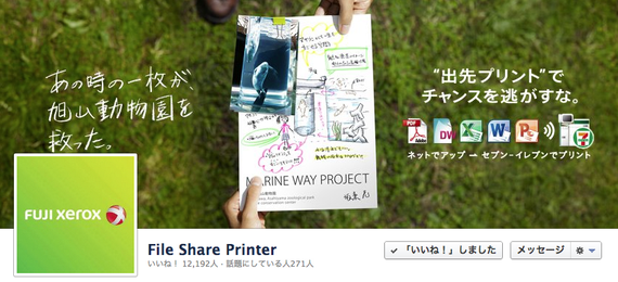 (2) File Share Printer