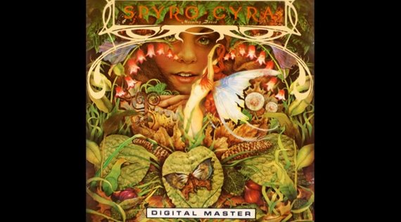 Spyro Gyra - Jubilee - YouTube