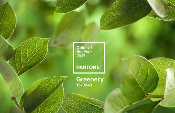 Pantonecoy2017heroshot2rgb