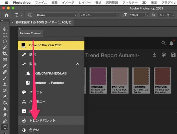 Screen_capture_20210214_11_17_40